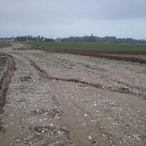 La même fascine en Novembre 2010 après un orage après arrachage des Pommes de Terre.