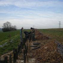 Plantation avec les élèves du lycée Rostand Janvier 2012