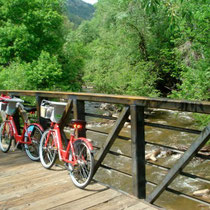 Boulder B-Cycles along Boulder Creek