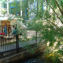 Boulder Creek and a glimpse of the Dushanbe Teahouse