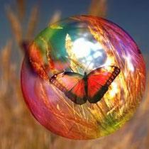 Abbildung Schmetterling