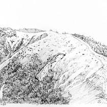 丹沢主脈線 丹沢山から蛭ヶ岳へ