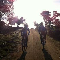 Camino del Montecito