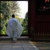 2012/11深井澤様より