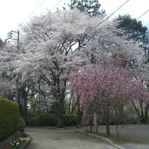 2012/04/10