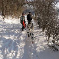Winterspaziergang mit Toback, Elli, Lune, Angela, Ingrid und Andreas