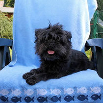 Linni loves this garden chair