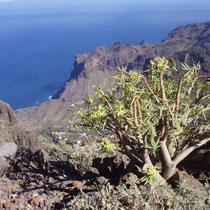 Spanien - Kanarische Inseln - La Gomera