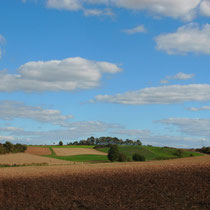 Landschaft bei Zeuzleben