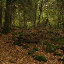 Deutschland - Bayerischer Wald