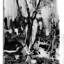 La forêt mystérieuse - Techniques mixtes