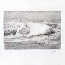 030-719 - Gravure sur cuivre