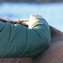 Visionäre Pferdeosteopathie nach Selina Dörling (VPO)
