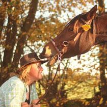 Zirzensische Lektionen Pferd