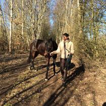 Morgenarbeit im Gelände mit Monty