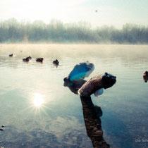 Pescher See - fotoblog by Schnappschützen - (c) die Schnappschützen
