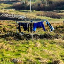 Wäsche müsste man sein, einfach mal abhängen...