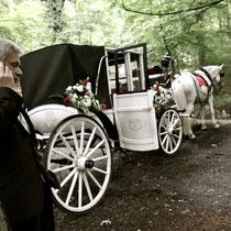 Hochzeitsfotos Drachenfels - die Schnappschützen