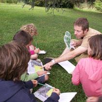Atelier Parc Jane Limousin à Châteauneuf-la-Forêt : résultat de la chasse aux arbres par l'identification des essences présentes et de leurs caractéristiques