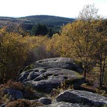 Les landes des Roches Brunagères ou du Puy la Besse - Peyrat-le-Château