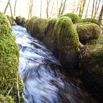 Vestiges du canal d'amenée d'eau d'un ancien moulin - Circuit de randonnée du Ruisseau des Moulins (Peyrat-le-Château)