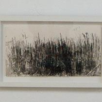 "© Joana Bruessow, l'herbs IV,V,VI, 12"" x 12"", ink on paper, 2012"