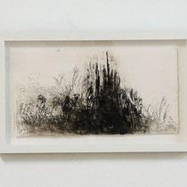 "© Joana Bruessow, l'herbs I,II,III, 12"" x 12"", ink on paper, 2012"