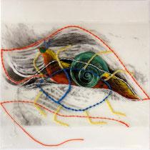Milena Pedrollo, Insetto, 2010, tecnica mista, acrilico e stampa digitale su acetato cucita e incollata su tela, 30x30 cm