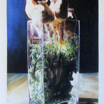 Vittorio Pasotti, Vaso con papaveri, acquarello, 38x24 cm