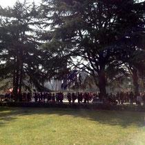 公園の中のたくさんの人