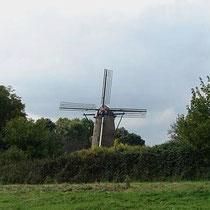 Sindsdien is de molen weer regelmatig draaiende te zien, waarbij ook wordt gemalen