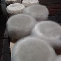 """le """"mucore' se développe sur les tommettes dans une cave fraîche et humide"""