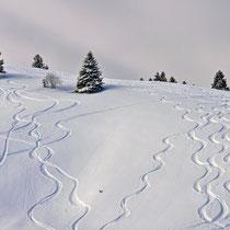Spuren im Schnee (Skigebiet Sudelfeld / Grafenherberg)
