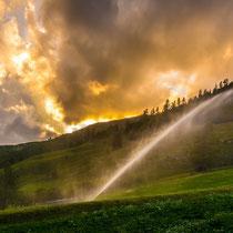 Bewässerung am Abend