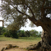 Tempel in Agricento.