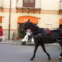 Kutsche in Palermo.
