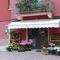 ....ein Laden voller wunderschöner Hortensien.