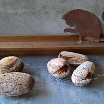Diverse Brote aus dem Holzbackofen
