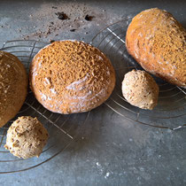 Brotvielfalt aus dem Holzbackofen
