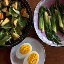 Gebratene Tagliliensprösslinge, Sauerampfersalat mit Apfel, gekochte Eier