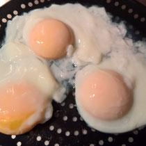 Versuch: pochierte Eier