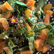 Sauerampfer- und Wildkräutersalat mit Orange