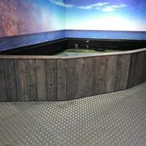 Bassin tactile aquarium de Montpellier