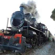 Treno Natura トレ―ノナトゥーラ