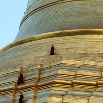 Moines sur la grande pagode Shwedagon - Yangon