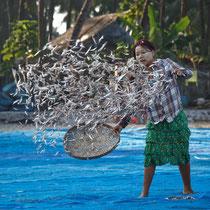 Village de pêcheurs - région de Mandalay