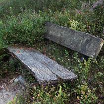 Platz im GGrünen - Foto: Volker Svensson