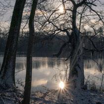 02 Winterstimmung - Foto: Dagmar Esfandiari