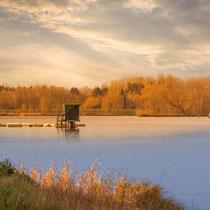 Abendsonne, Dove-Elbe - Foto: Adolf Dobslaff