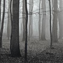 15 Foto:   Michael Wohl-Iffland